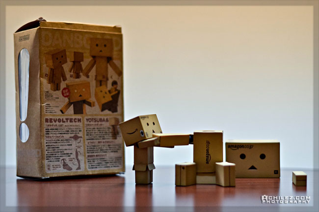 achilez-blog-danbo-ajax-danboard-365-faces-danbo-assembly-instruction-101-650