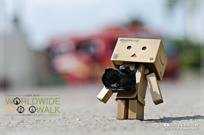achilez-blog-danbo-ajax-danboard-365-faces-danbo-is-alone-on-scott-kelby-worldwide-photowalk-2011-650
