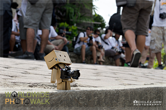achilez-blog-danbo-ajax-danboard-365-faces-danbo-is-out-of-scott-kelby-worldwide-photowalk-2011-650
