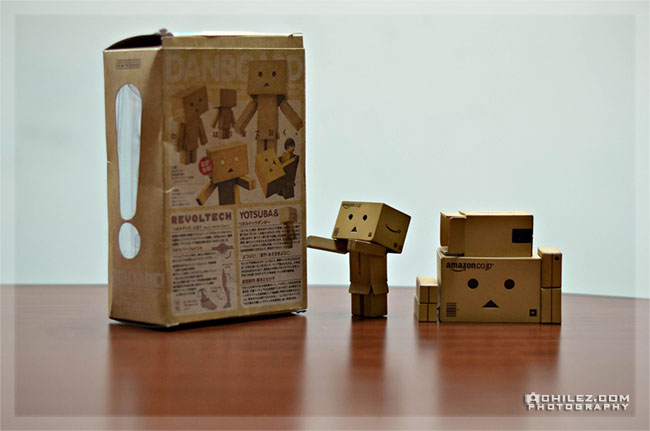achilez-blog-danbo-ajax-danboard-365-faces-danbo-need-help-assemble-my-dad-650