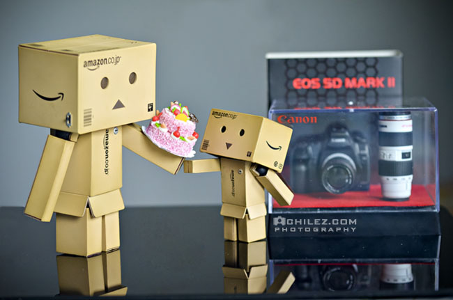 achilez-blog-danbo-ajax-danboard-365-faces-happy-thanksgiving-give-gift-cake-camera-650