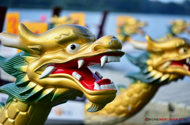 Dragon Boat MR500 Festival 2013 Lower Seletar Reservoir March 2013 (1) - dragon boat macro
