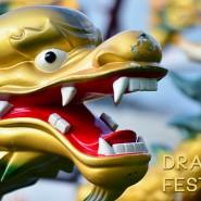 Dragon Boat MR500 Festival 2013